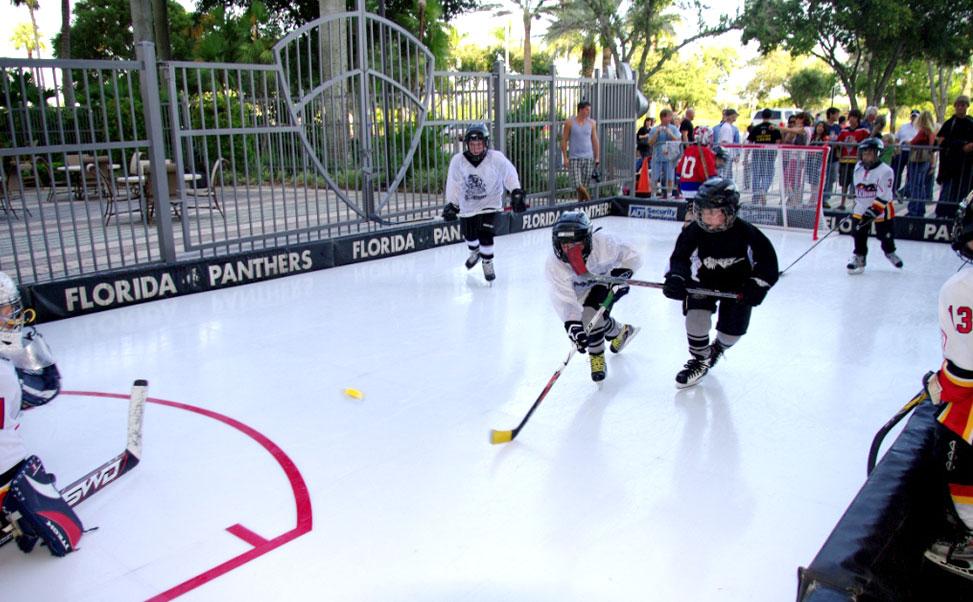 フロリダパンサーズ用エクストラアイスの合成スケートリンク