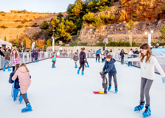 Xtraice leisure synthetic ice rink|Best business for you